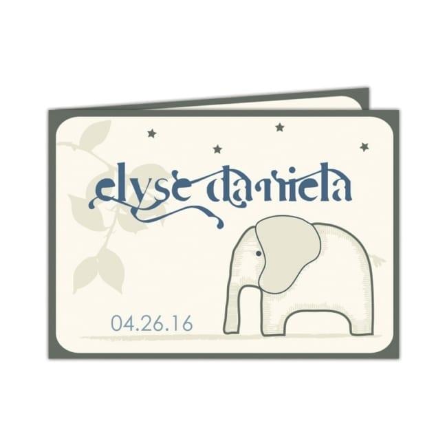 Geboortekaartje Olifantje - leuk olifantje op de voorkant, grappig lettertype voor de babynaam