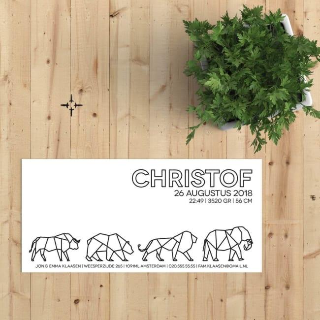 Gave geometrische silhouetten van een aantal dieren (stier, beer, leeuw en olifant) prijken op de voorkant van dit geboortekaartje Geometrische Diertjes. Voorkant van kaartje.