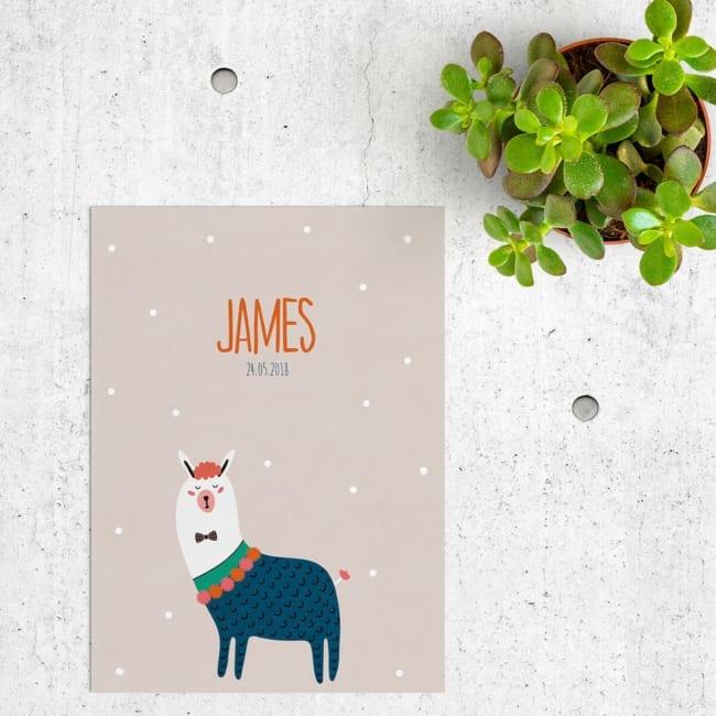 Een ongewoon en grappig dier die je niet vaak ziet op een kaartje, Geboortekaartje Lama presenteert... jawel, een lama! Leuk aangekleed en versierd. Geboortekaartjes met dieren.