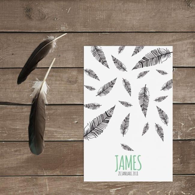 Geboortekaart Veren is ontworpen om jullie pasgeboren kleine te presenteren. De leuke, handgetekende veren in grijstinten zetten een mooie, lieflijke sfeer neer.