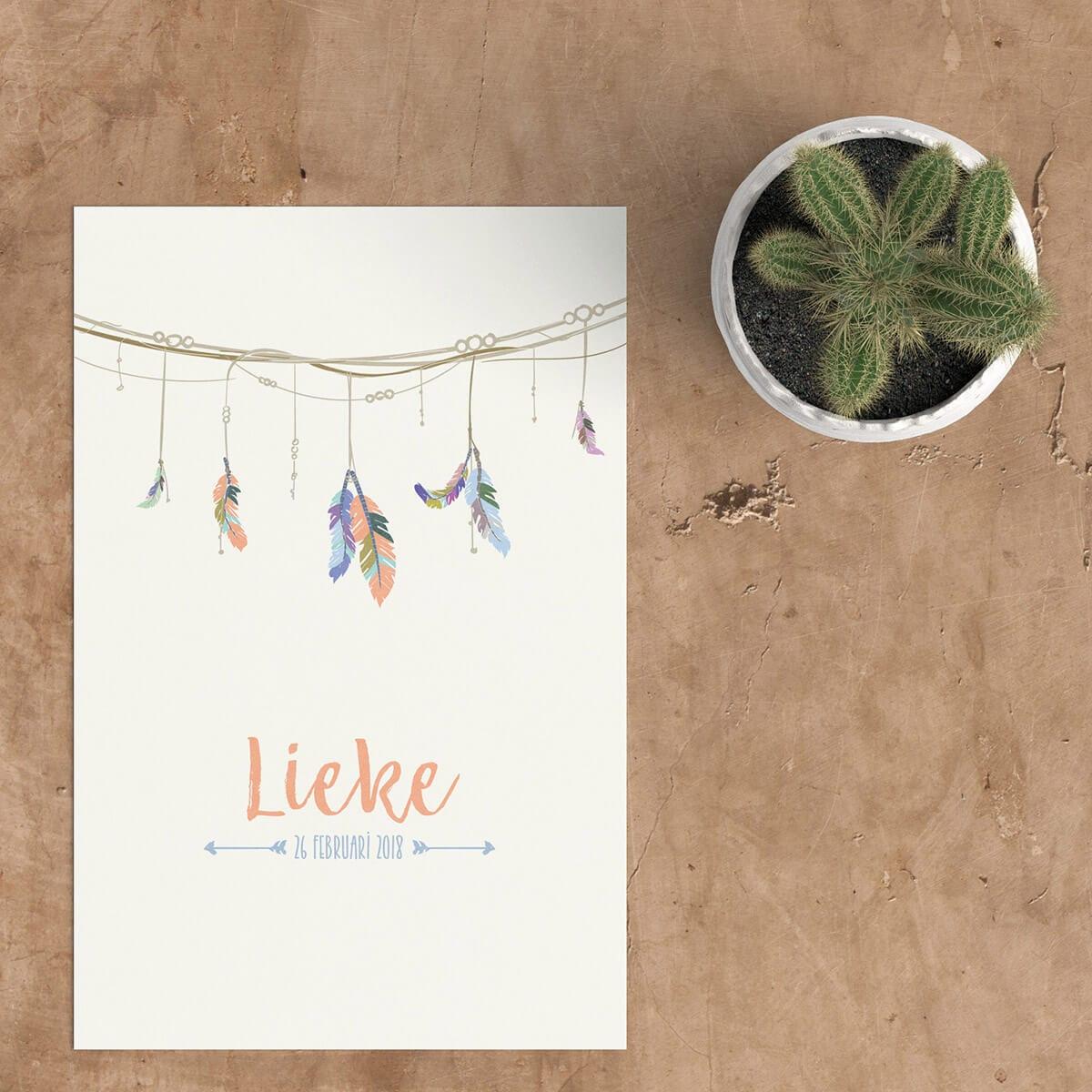 Stijlvol ontwerp, geboortekaartje Slinger met Veren gebruikt illustraties van kleurvolle veertjes en plaatst deze hangend aan een sierlijke slinger.