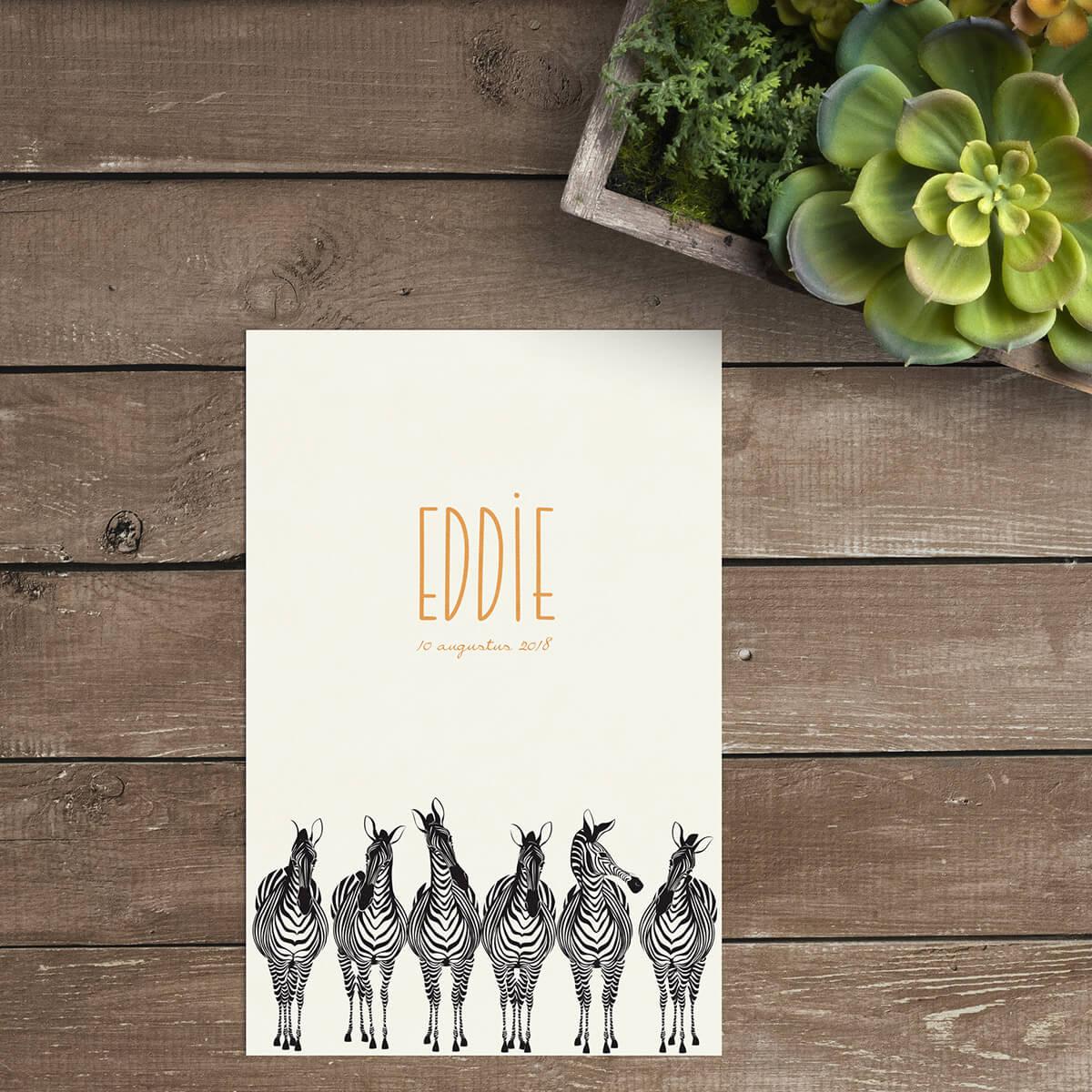 Geboortekaartje Zebra Parade is een leuk geïllustreerd ontwerp met een dikke knipoog.
