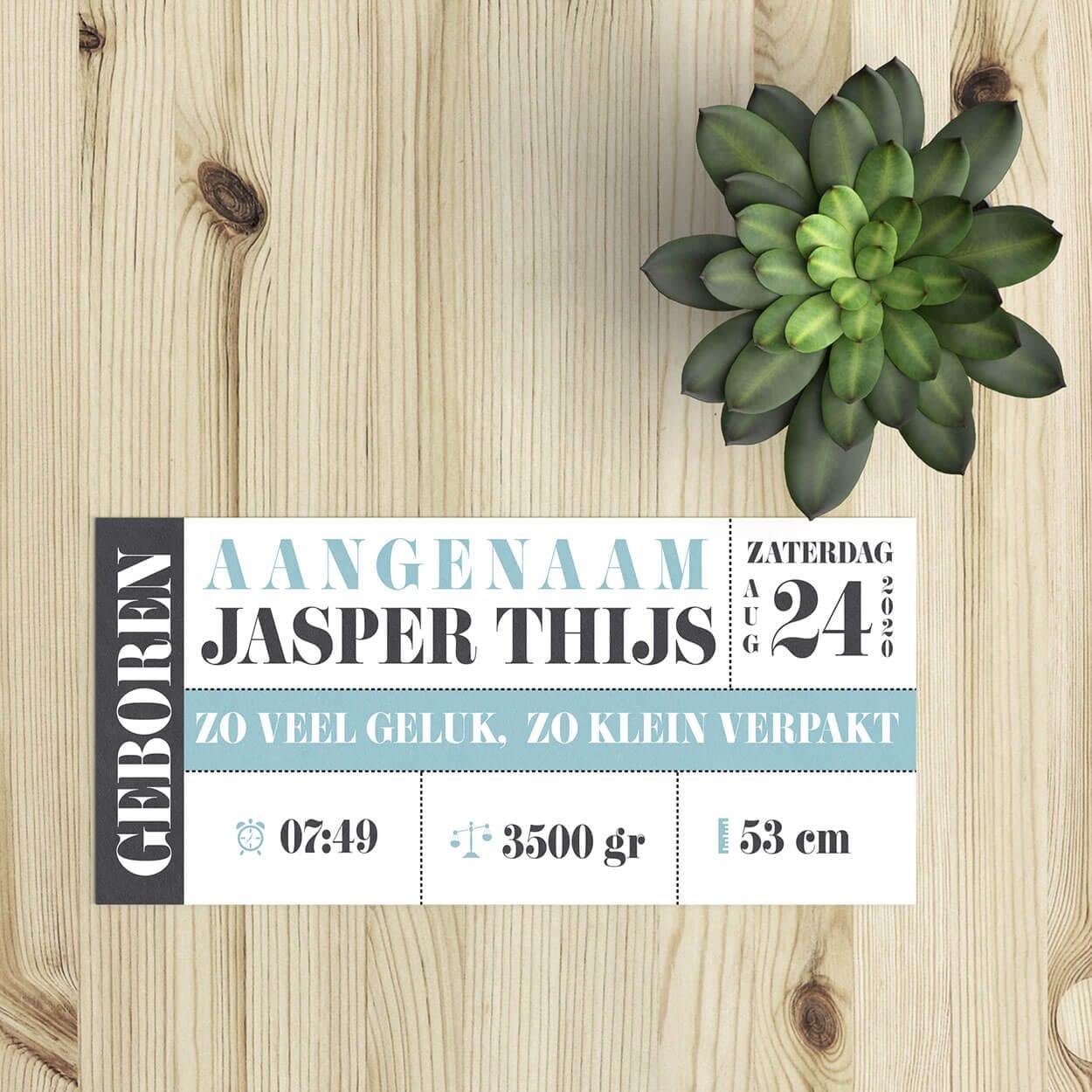 Eenvoudig en overzichtelijk ontwerp, geboortekaartje Toegangsbiljet biedt een eigentijdse insteek in combinatie met zachte pastelkleuren.