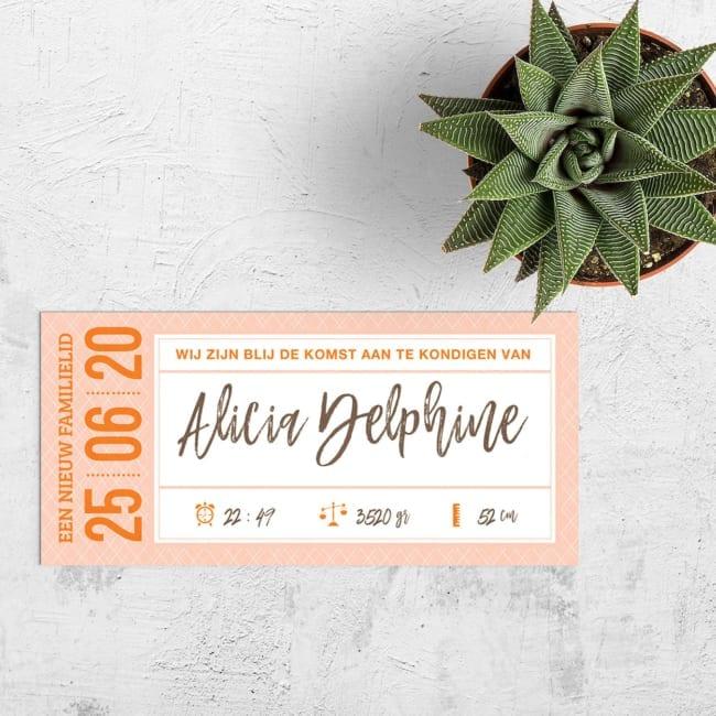 Geboortekaartje Ticket met mix van retro en moderne elementen, sierlijk en een strak lettertype.