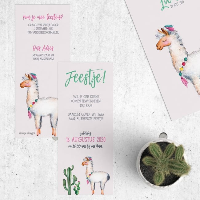 Babyborrel uitnodigingen met een lama.