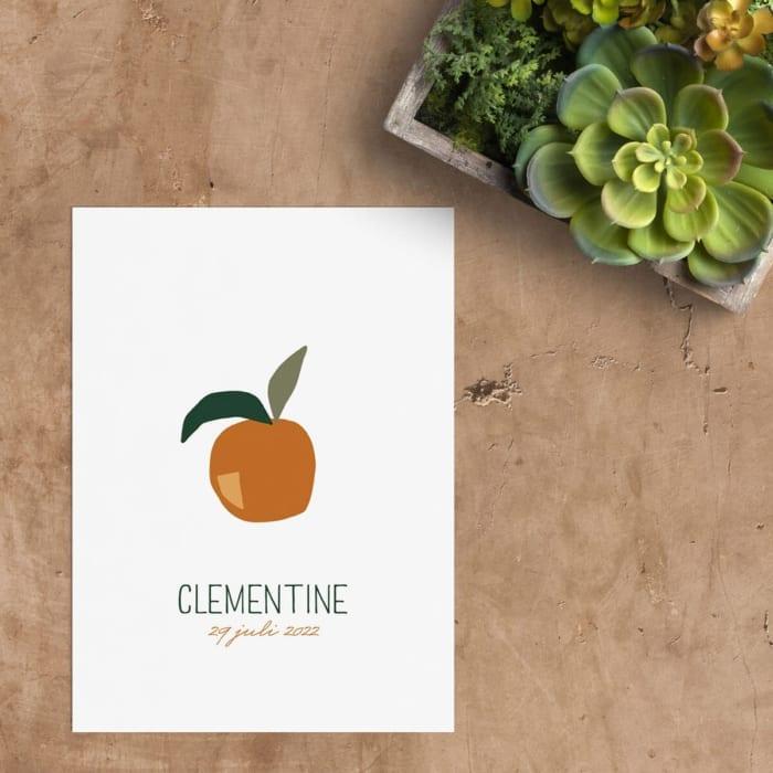 Geboortekaartje Clementine is een fruitig ontwerp met een knipoog. De stijl van de sinaasappel is abstract en strak en de kleur een opvallend oranje.