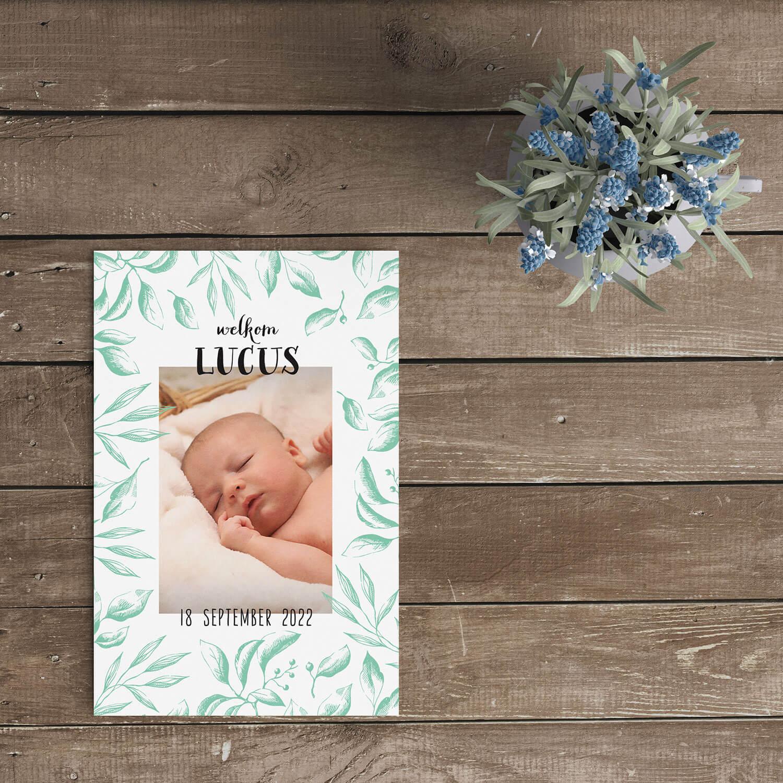 Geboortekaartje Foto met leuke blaadjes - de naam zegt het al: leuke, groene blaadjes omlijsten een foto van jullie kleine op de voorkant van dit ontwerp.